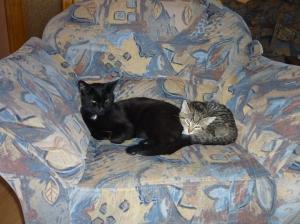 Phoebe und Finn im Juli 2011