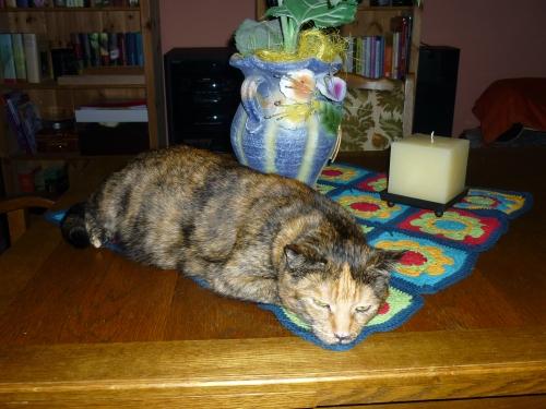 Ich bin die schönste Katzen - Deko im Haus !!!