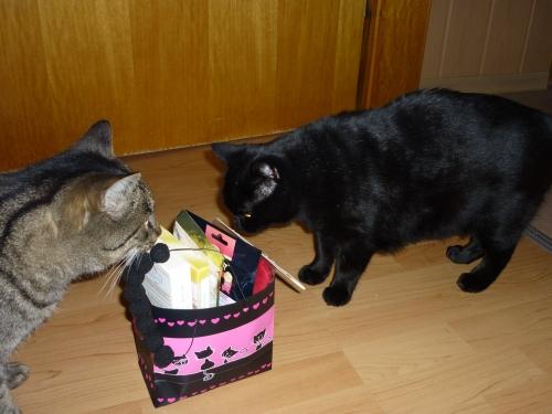 Oh, schickes Täschchen :) was da wohl drinnen versteckt ist ? Wollen wir mal auspacken ?