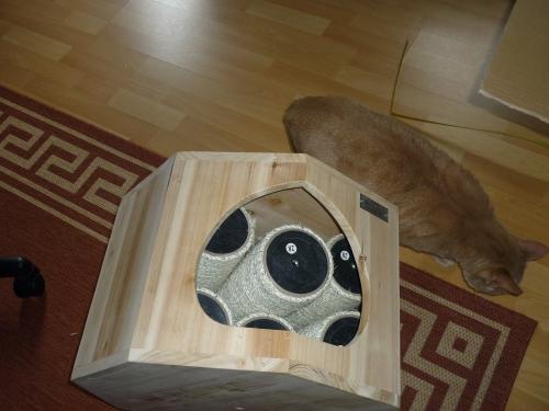 Nööööö, alle Katzen suchen das Weite und auch mir wird von dem Geruch schon übel :(