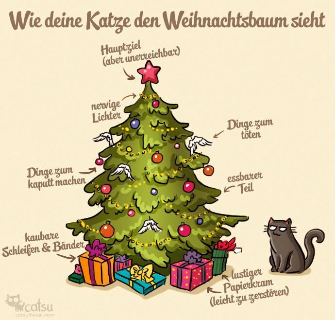 Wie deine Katze den Weihnachtsbaum sieht